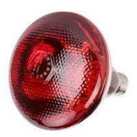 IR Heating Bulb 220V/150W