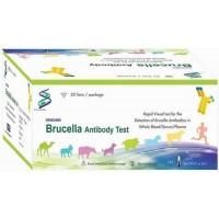 Rapid Test Kit- Brucella